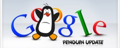 How to optimize your site with recent Penguin and Panda update